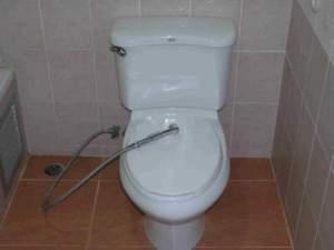 Toilet met handdouche
