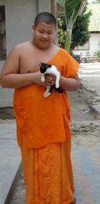 Worden de monniken hier op de Buddha-image geselecteerd??